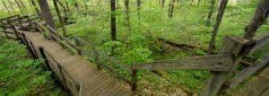 Springville Marsh State Natural Preserve
